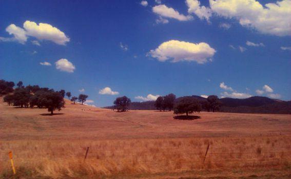 Pogled iz auta na prirodu Victorije