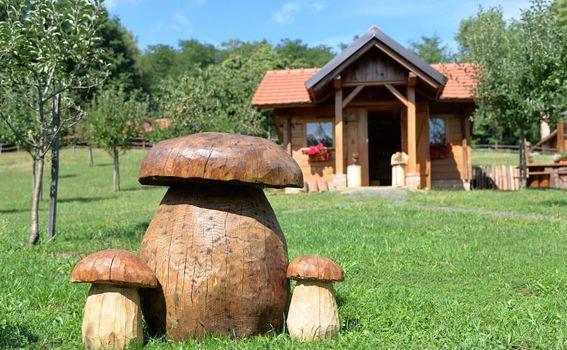 Vila Brigita kod Novog Marofa - 11