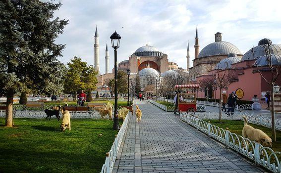 Valentina u Istanbulu - 43