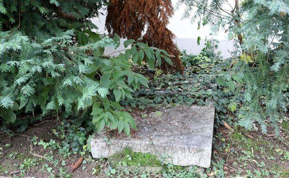 Jurjevsko groblje - 2