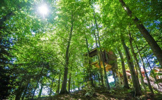 Kućice u Sloveniji - 2