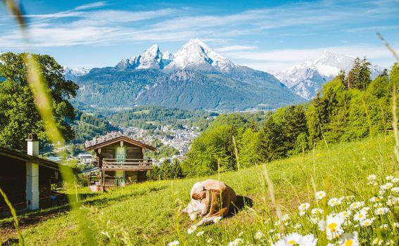 Idilična Austrija