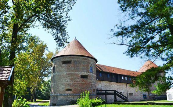 Stari grad Sisak - 5