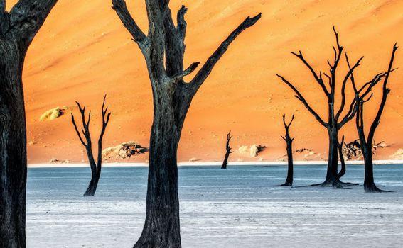 DeadVlei u Namibiji - 1