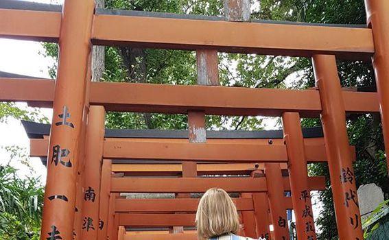Ueno park - Tori gates