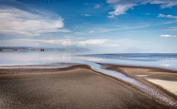 Jezero Natron, Tanzanija - 2