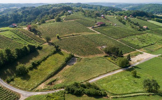 Hrvatska vinska priča u finalu natjecanja američkog Wine Spectatora - 1