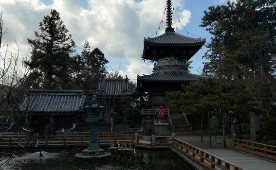 Maja Klarić u Japanu - 3