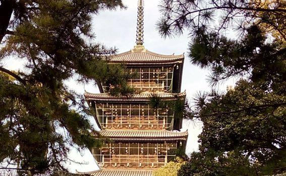Maja Klarić u Japanu - 4