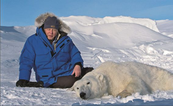 Tijekom snimanja Zamrznutog planeta pratio sam znanstvenike iz Norveškoga polarnog instituta dok su strelicom uspavljivali polarne medvjede iz helikoptera. Istraživanja su tijekom godina pokazala da medvjedi gube na težini jer teško love tuljane na sv