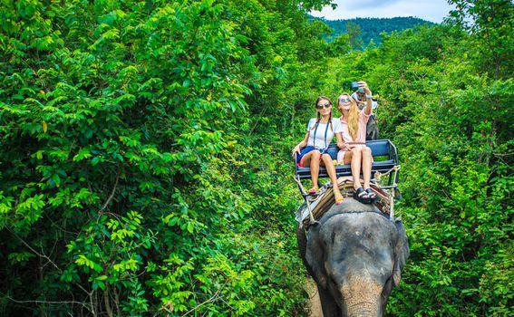 Životinje i turizam - 6