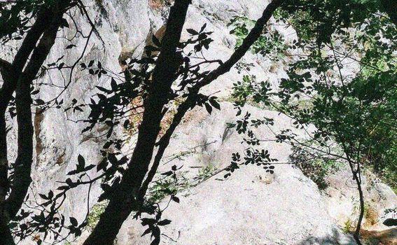 Labin - Rabac planinarske staze - 3