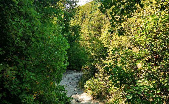 Labin - Rabac planinarske staze - 4