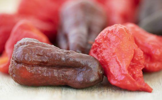 Ljute papričice - 2