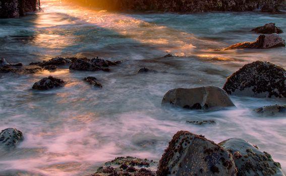 Pfeiffer plaža, Kalifornija - 4