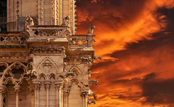 Notre Dame - 3