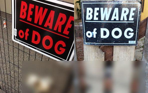 Opasni psi