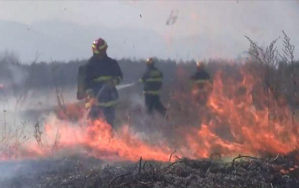 Vatrogasci gase požar, ilustracija - 1