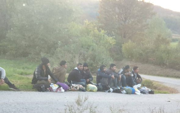 Migranti kod Pokupskog (Foto: Dnevnik.hr)