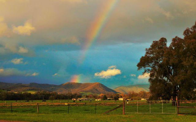 Život na australskoj farmi - 4