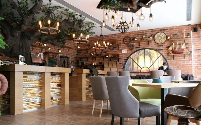 Kafić Potter otvoren je u Zagrebu - 5