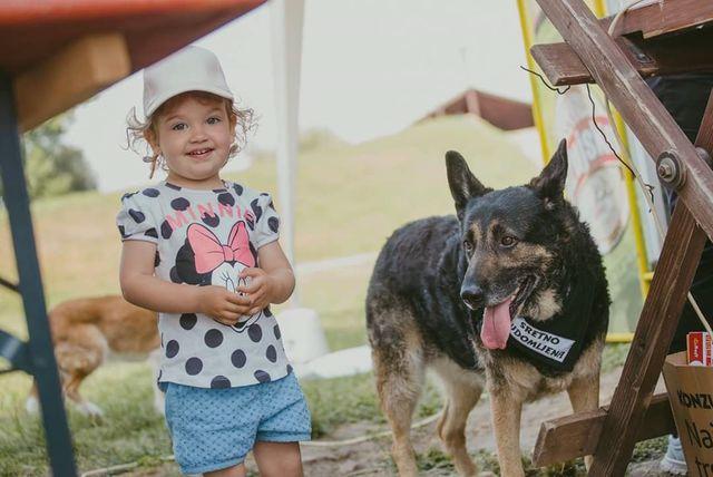 Kampanja \'Budi razlog za nečiji osmijeh - Udomi psa iz azila!\' udruge Pobjede iz Osijeka - 6