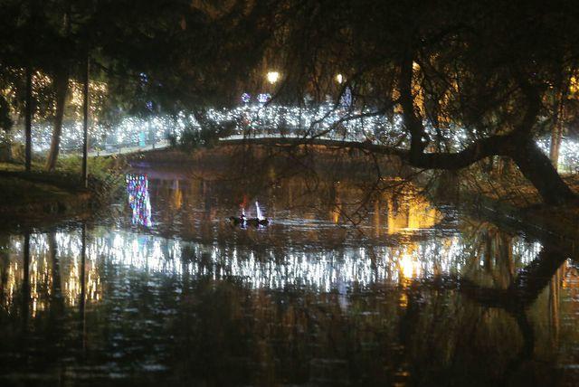 Advent u Maksimiru je nova blagdanska lokacija - 8