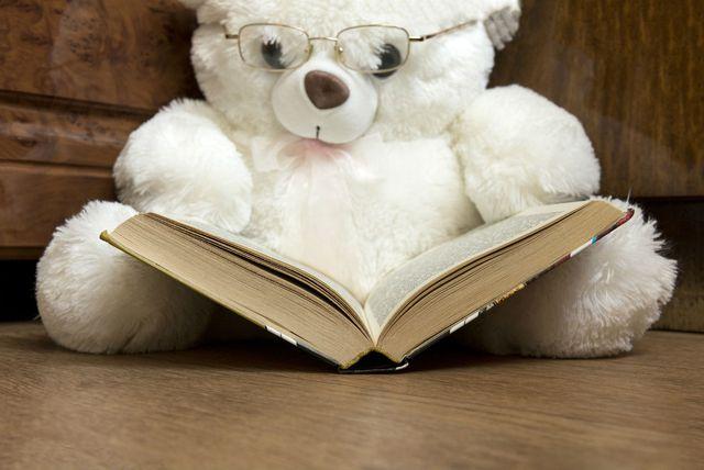 Plišani medvjedić čita knjigu