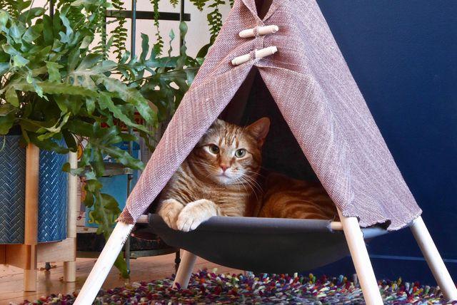 Šator za mace - 4