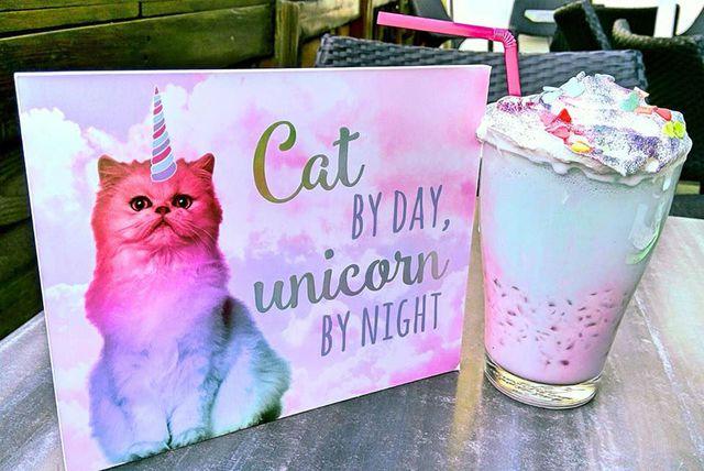 Caticorn frappe uskoro će biti u ponudi zagrebačkog kafića Cat Caffe