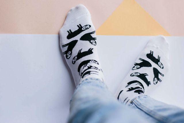 Sokne s ljenjivcima nastale u suradnji tvrtke Jadran Čarape i Sugar Ants