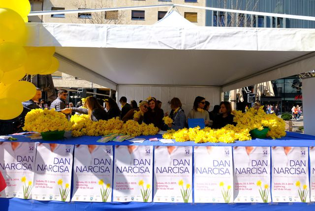 Udruga Europa Donna Hrvatska obilježila 23. Dan narcisa - 2
