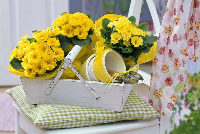 Sitnice koje će vrtlarenje učiniti još ljepšim i ugodnijim - 5