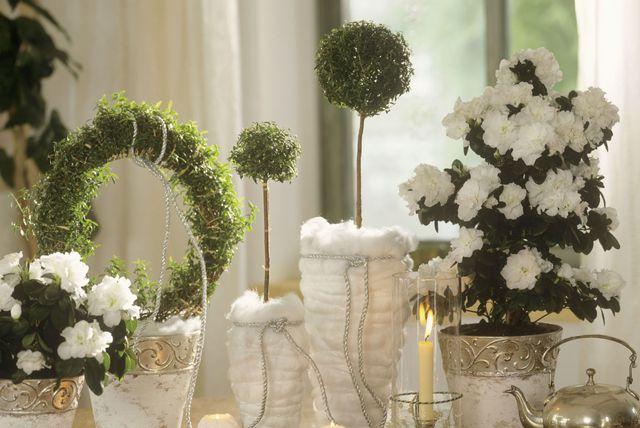 ''Golo zelenilo'' popularan je način dekoriranja ove godine (Foto: Living4media).