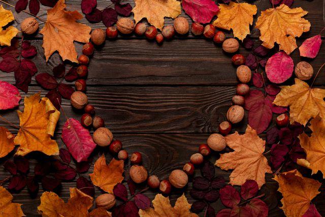 Lišće i jesenski plodovi