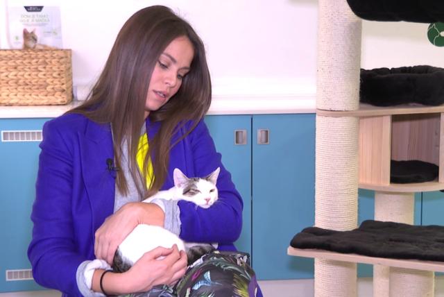 Mia Kovačić i njezin mačak Spock