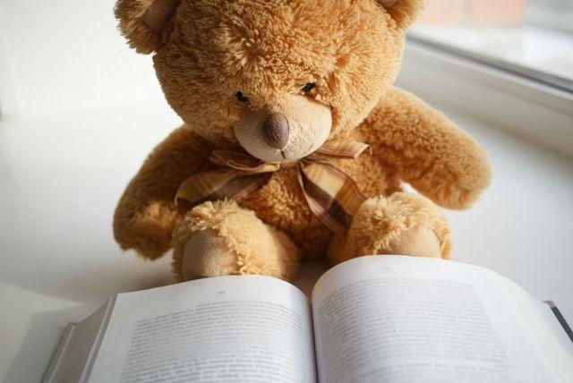 Medvjedić čita knjigu