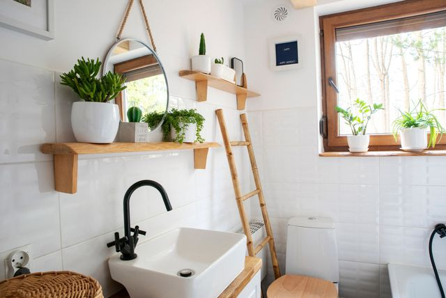 Biljke u kupaonici - 9