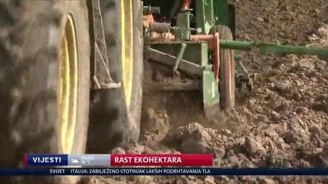 Rast ekohektara (Video: Dnevnik Nove TV)