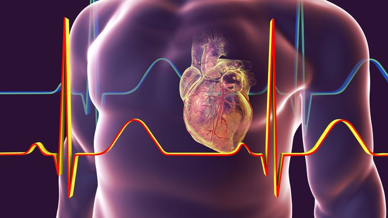 Otkucaji srca