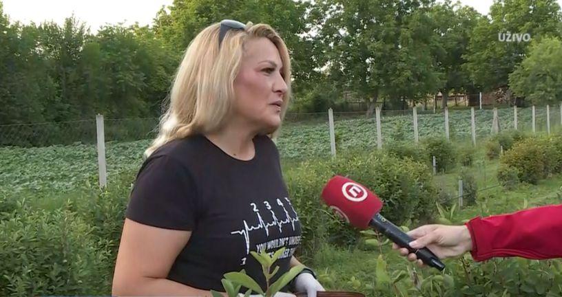 Tanja Ćosić, uzgajivačica sibirske borovnice