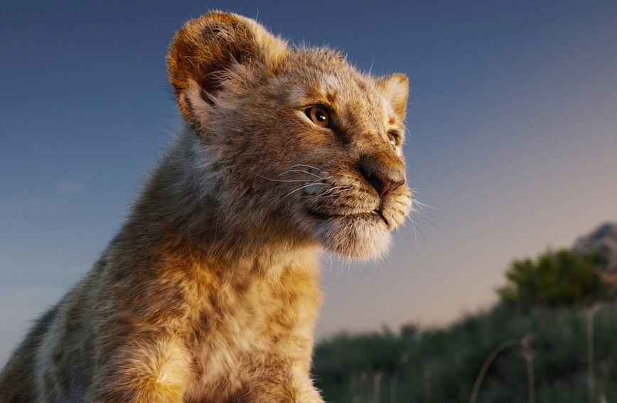 Ljetni praznici savršeni su da svojem djetetu predstavite poruke koje nosi 'Kralj lavova'