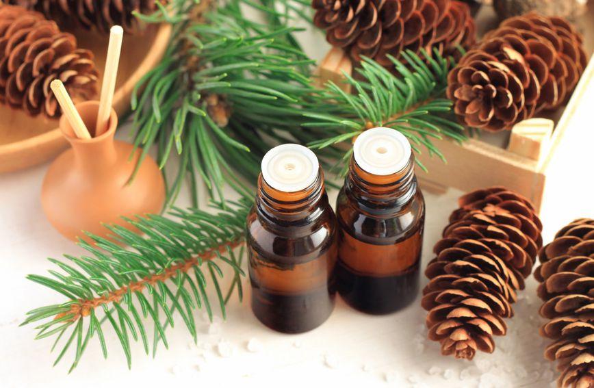 Svako eterično ulje nastaje kao produkt biljke iz njezinog korijena, kore, listova, sjemenki, plodova ili cvjetova