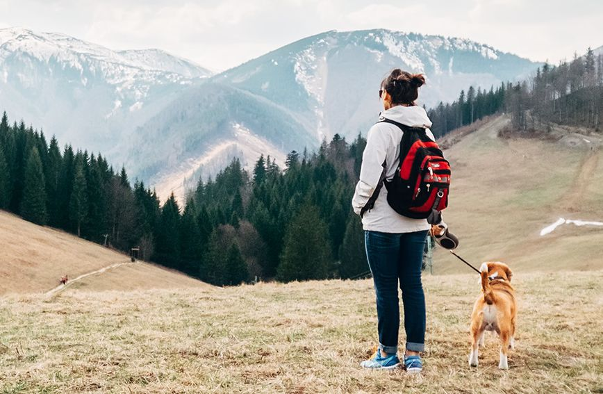 Planinarenje ima cijeli niz koristi za zdravlje