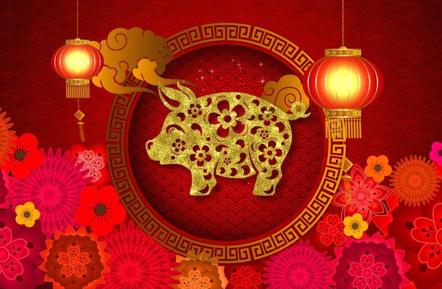 Po Kineskom horoskopu 2019. je godina zemljane svinje