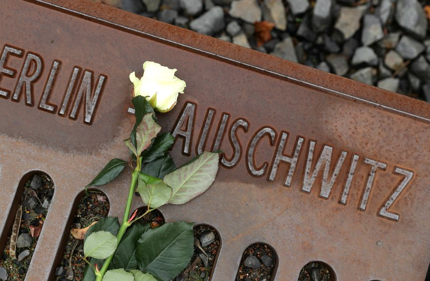 Cvijet na pruzi kojom su Židove vlakovima dovodili u Auschwitz