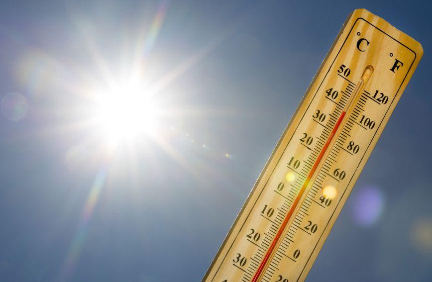Za ljetnih vrućina jako je važno ne ostavljati djecu i životinje u automobilu