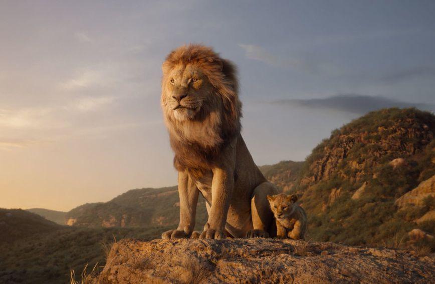 Kadar ioz novog Kralja lavova