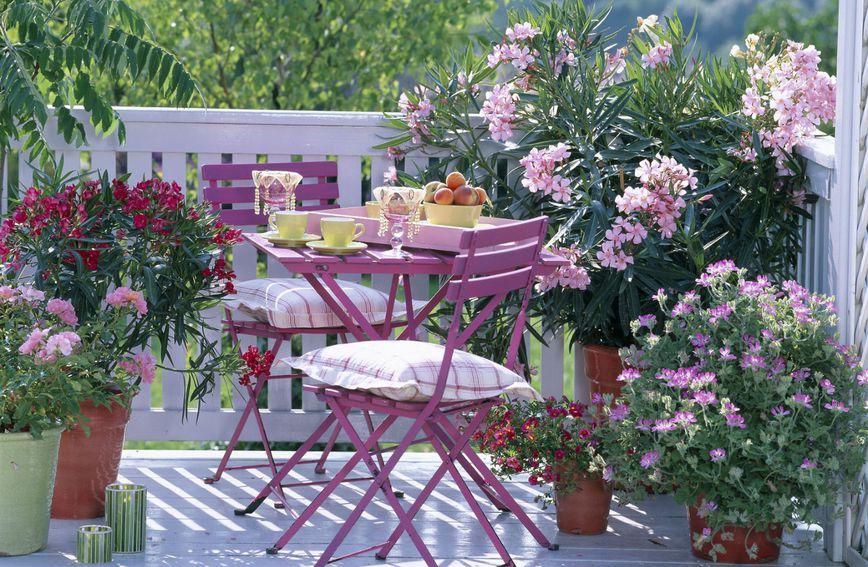 Cvijeće će vašem balkonu podariti novi život i učiniti ga prostorom na kojem ćete voljeti provoditi vrijeme