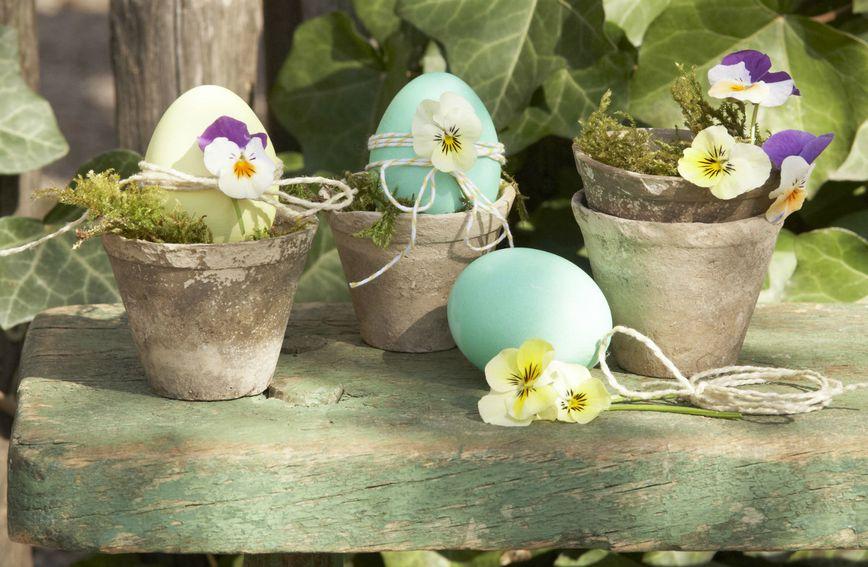 Ideje za uskrsne dekoracije s maćuhicama
